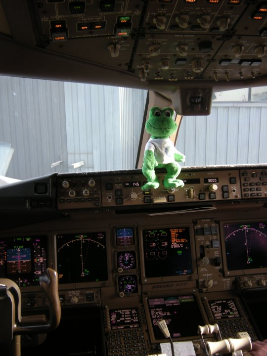 Polly in the Cockpit of a Boeing 777