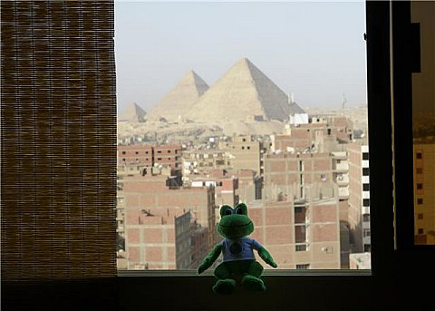 Polly the Travel Frog in Egypt