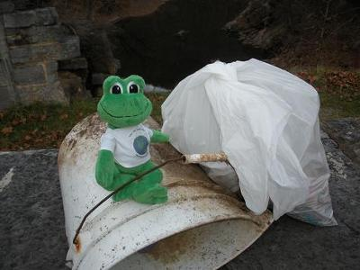 Go Green! Just call me Polly the clean up frog!
