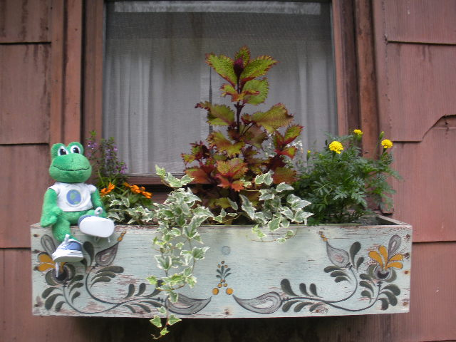 German Window Boxes Window Flower Boxes Are Often