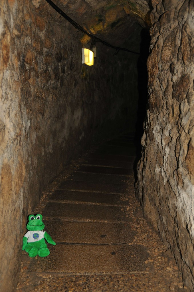 Crusader Sewer and Escape Tunnel in Akko